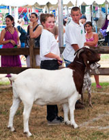 photo:  4H club winners